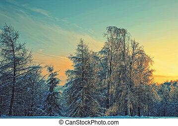 abend, winterlandschaft