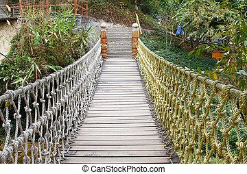 abenteuer, hölzern, seil, hängebrücke, in, dschungel, rainforest