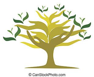 abertos, árvore, mãos