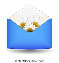 abertos, flor, envelope, chamomile