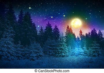 abete, pieno, inverno, moon., neve, albero, coperto, paesaggio