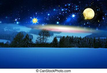 abete, pieno, moon., neve, albero, fondo, coperto, natale