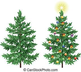 abeto, asseado, ornamentos, árvores, natal