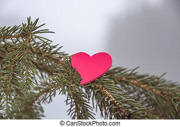 abeto, ramas, con, corazón