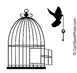 abierto, jaula, llave, paloma