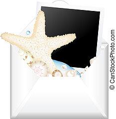 abierto, sobre, con, foto, y, estrellas de mar