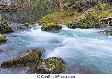 Abiqua Creek in Spring Season