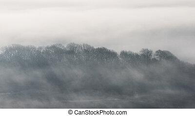 ablegry, mglisty, zima, pola, oszałamiający, przez, krajobraz, angielski, kołyszący, wiejski, wschód słońca