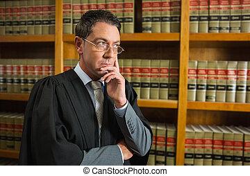 abogado, pensamiento, en, el, biblioteca ley