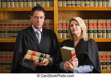 abogados, tenencia, libros, en, el, biblioteca ley