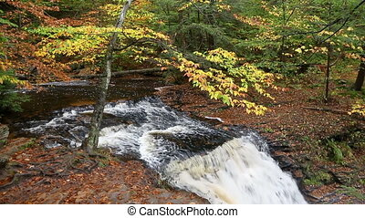 Above Ganoga Falls in Autumn Loop ? Ricketts Glen Pennsylvania