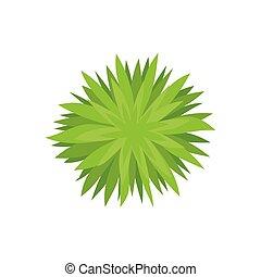 above., leaves., 插圖, 背景。, 布希, 矢量, 鋒利, 白色, 看法