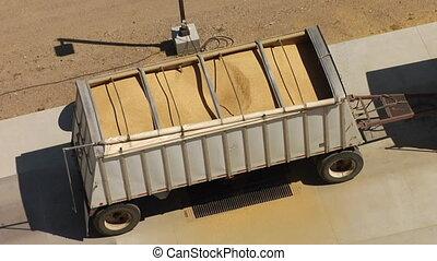 above shot of semitruck offloading wheat