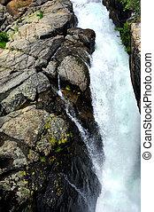 Above the Lake Creek Falls