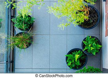 Above view at balcony with plants