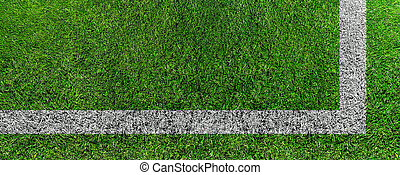 green grass sports playing field with white field markings