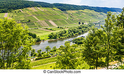 above view of valley of Mosel river in summer