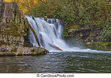 Abrams Falls At Cades Cove In The Great Smoky Mountain...