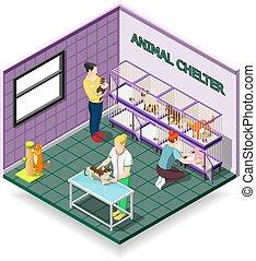 abri, isométrique, composition, animal