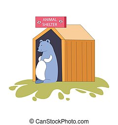 abri, ours, hutte, bois, animal, maison, mammifère