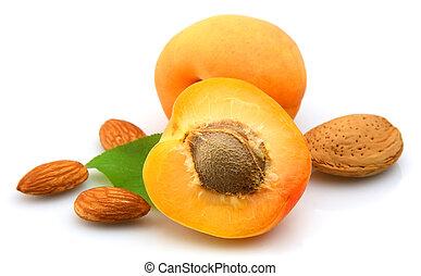 abrikoos, met, amandel
