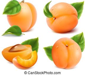 abrikozen, bladeren, groene