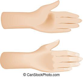 abrir las manos, white., aislado