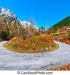 Abrupt Bend in the Asphalt Road in the Italian Alps
