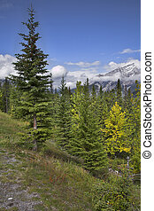 Abrupt hillside. - Picturesque mountain reserve in northern...