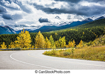 Abrupt turn of the road among the autumn wood. The ...