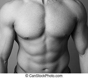 abs, de, um, muscular, homem