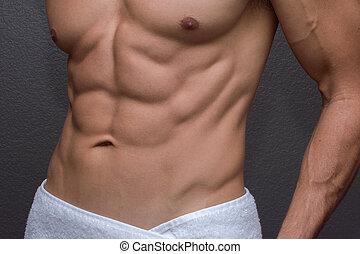 abs, mâle, closeup
