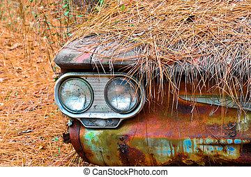 Abstract Abandoned Scrap Car