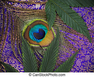 abstract, achtergrond, met, peacock veer, en, cannabis, bladeren
