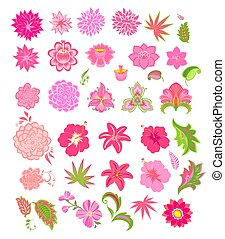 Abstract and tropical pink flowers and decorative leaves set...