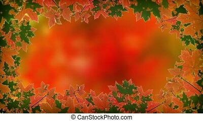 Abstract, animated frame of autumn maple leaves in green and orange, swaying softly in a gentle breeze. Video 4k
