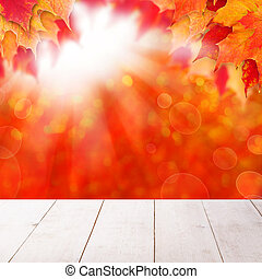Abstract autumn background with fall maple leaves and sun light