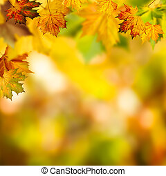 Abstract autumnal backgrounds with beauty bokeh