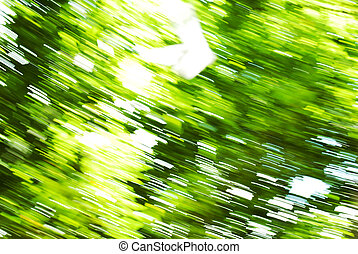 abstract background blur green tree, moving camera while shooting.