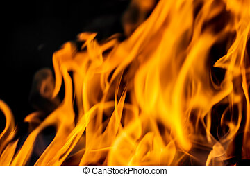 abstract background. flames of fire