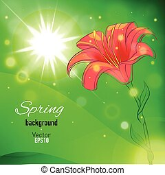 Abstract background for spring with lily flower.