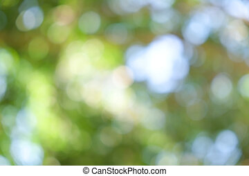abstract background green boke