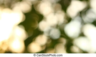 abstract background of light spots bokeh HD