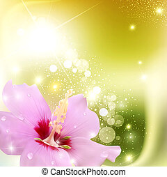 abstract background with a delicate flower and radiance