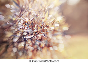 Abstract background with bokeh with branches of willow....