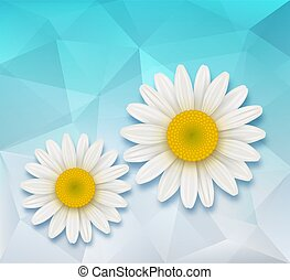 Abstract background with chamomile flowers