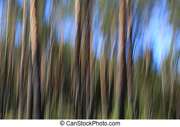 Abstract Background with Pine Trees and Sky
