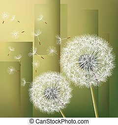 Abstract background with two flowers dandelions
