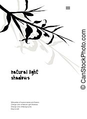 Abstract banner with black tropical leaves shadow isolated on white background. Vintage style Presentation template