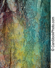 Abstract bark background